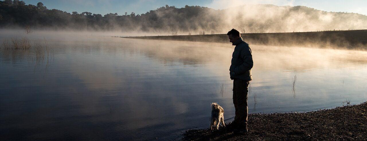 fog, lake, calm