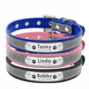 Personalized Leather Dog Collars – Reflective Collars with Name Plates