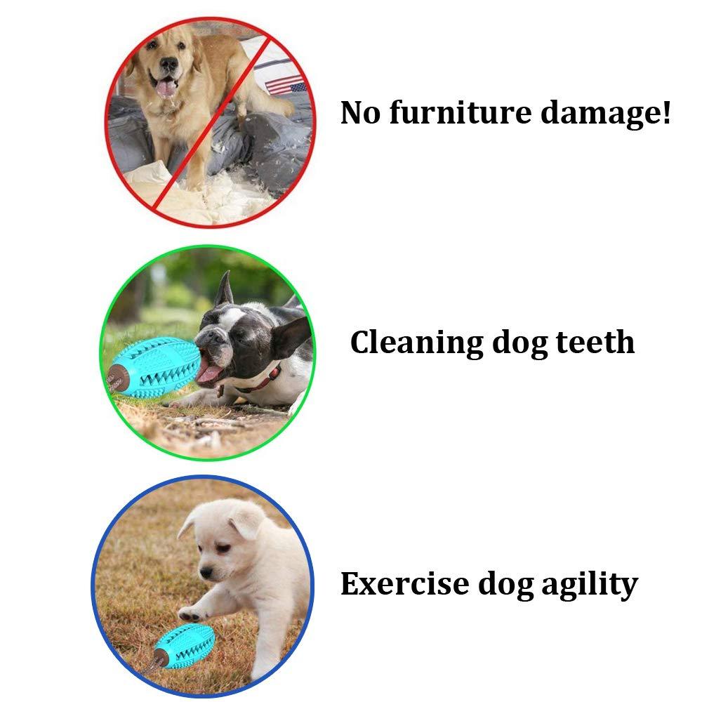 Benefits of Dog Tug Toy