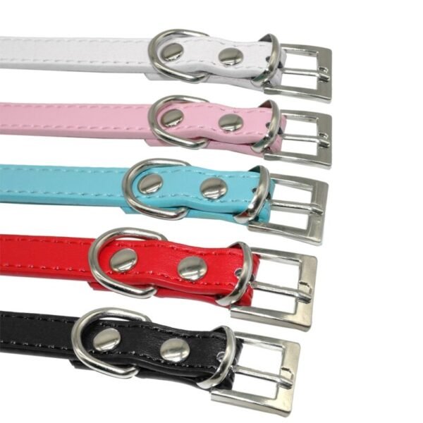 Metal Buckle on bling dog collars