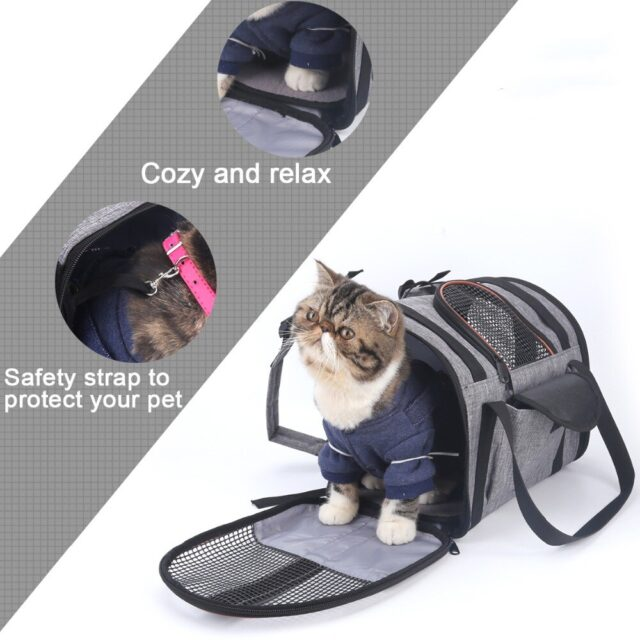 Cozy and Safe cat carrier bag