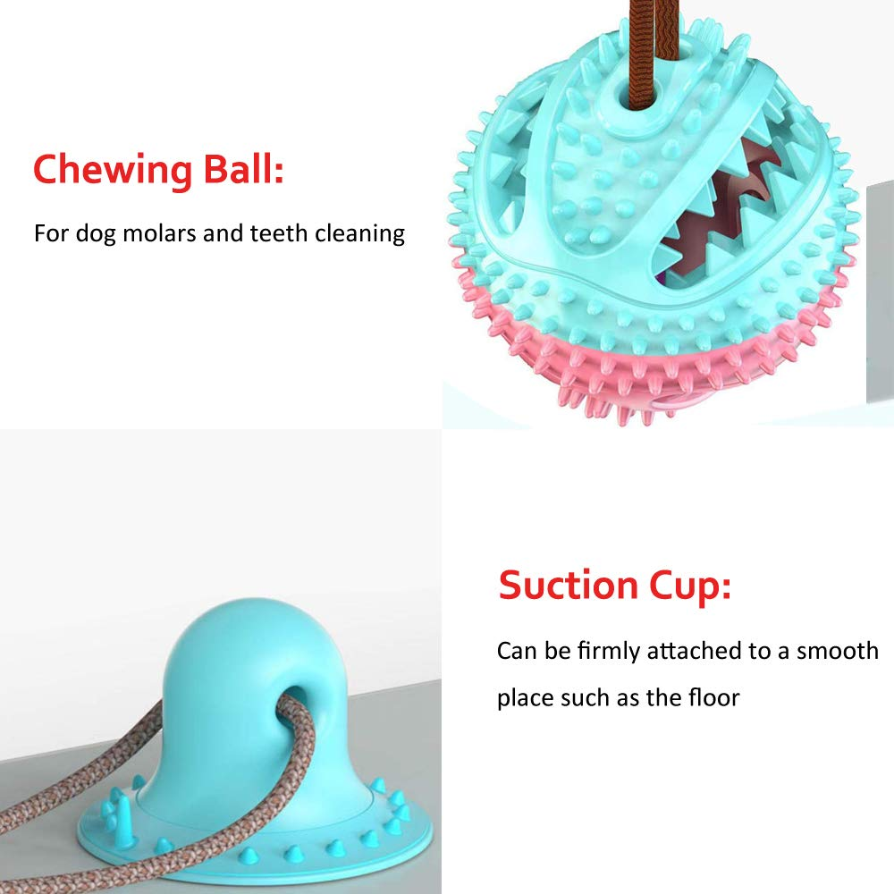 Chewing Ball with Suction Cup