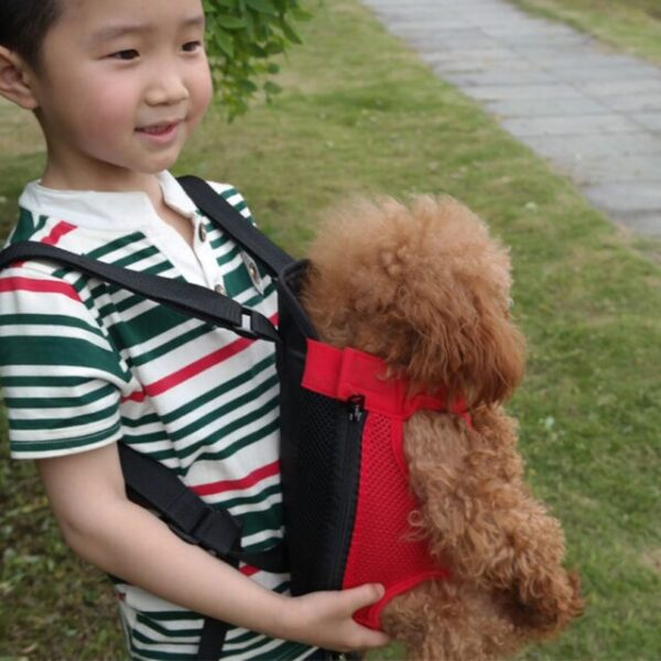 kid carrying a dog with a carrier backpack