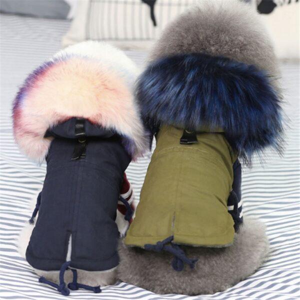 Dogs wearing fleece dog jackets with faux fur hoods