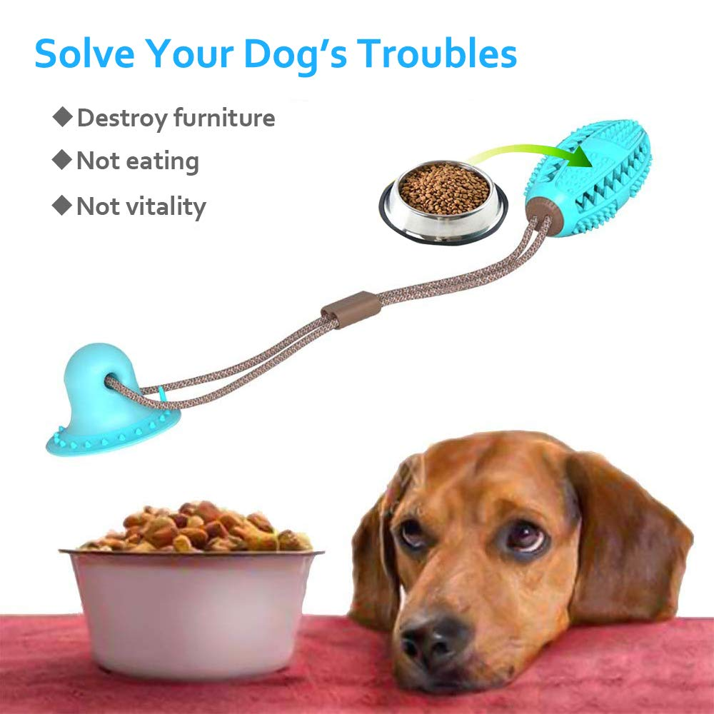 Improves your dog health