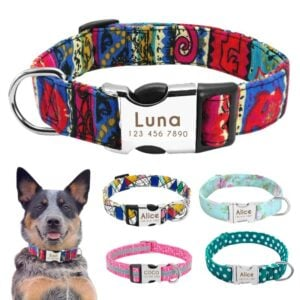 Custom Dog Collars – Nylon Dog Collars with Engraved Name on Buckle