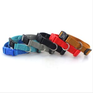 Nylon Dog Collar – Classic Quick Release Collar