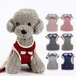 Small Dog Harness and Leash – Bow Tie Pet Vest