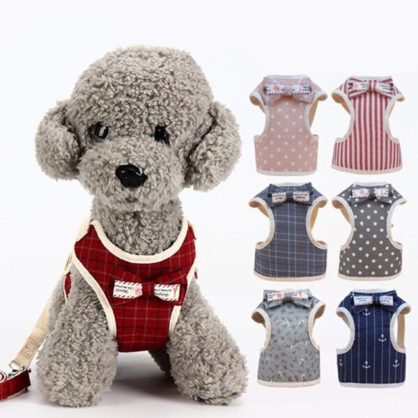 Small Dog Harness with Bow Tie and Leash