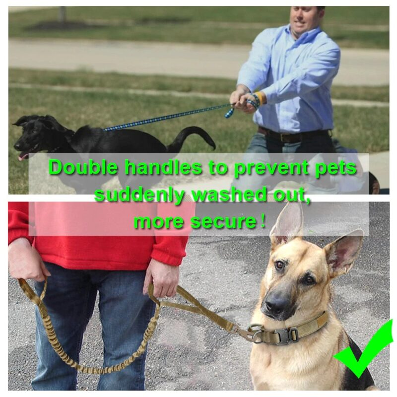 Double Handles on the dog leash for better security