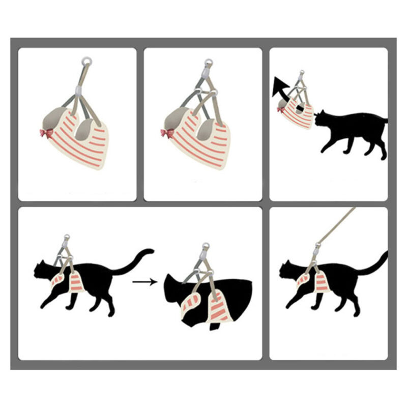 How to put on the dog harness