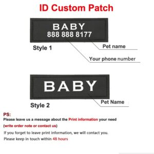 Personalized Dog Harness with Leash and Name Patch