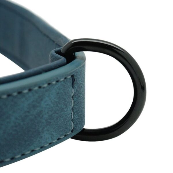 Metal D-Link on a leather collar for dog leash