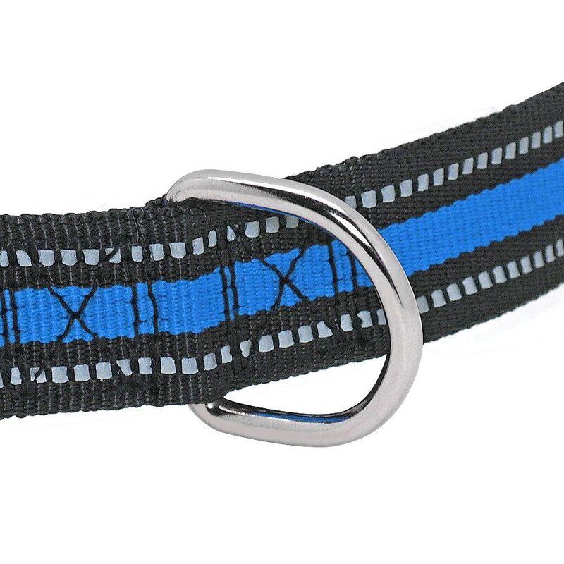 Metal Leash ring on the dog collar
