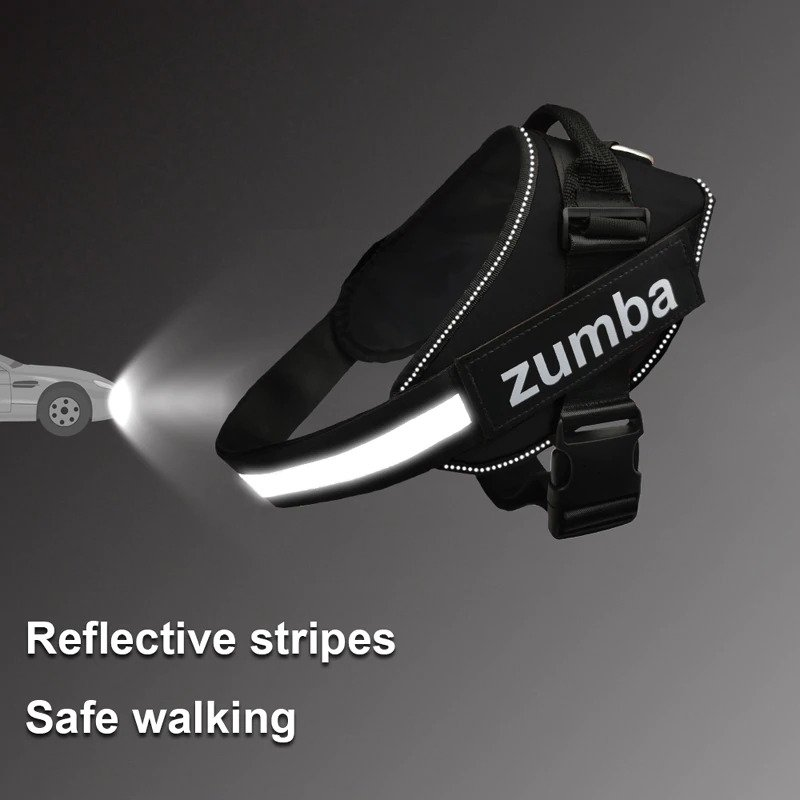Reflective design of the dog harness