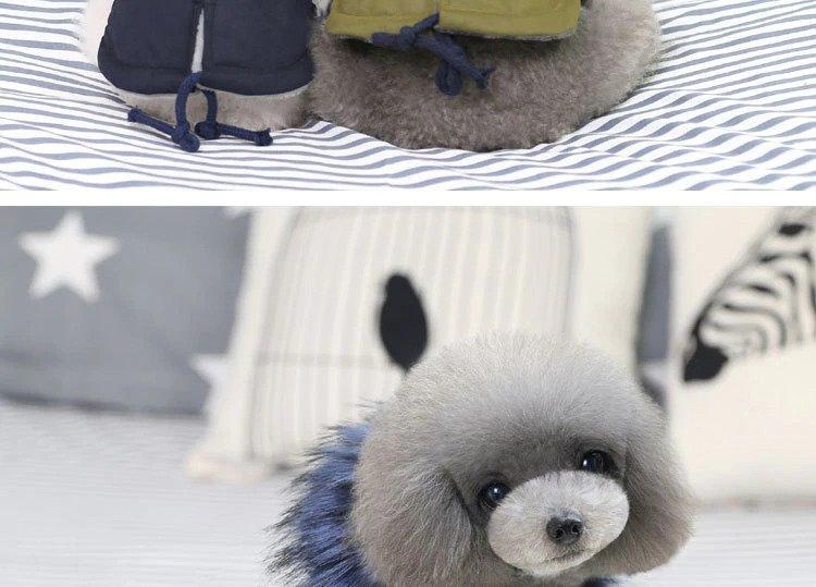 Windproof dog coats