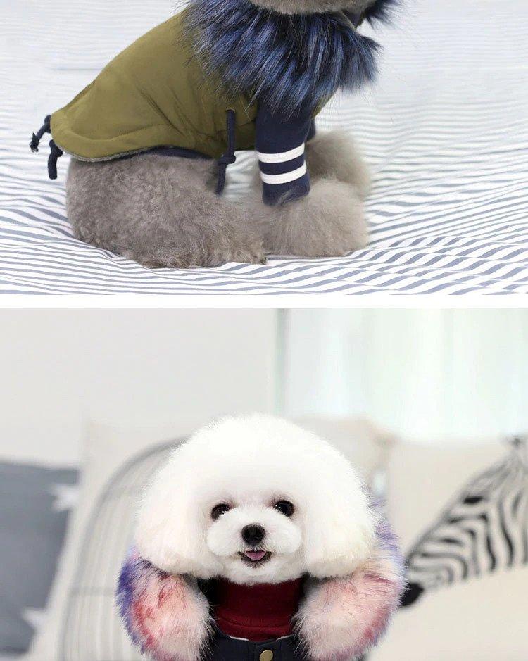 warm winter dog coats