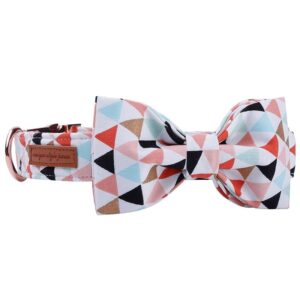 Colourful Banner Bow Tie Dog Collar with Matching Leash