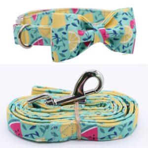 Fresh Lemon Bow Tie Dog Collar with Matching Leash