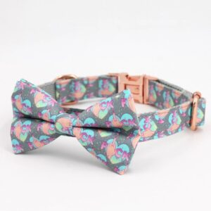 Funny Colourful Bow Tie Dog Collar with Matching Leash