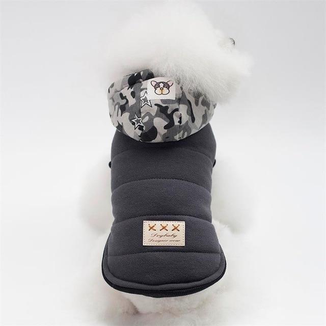 Grey Dog Jacket with camo hood