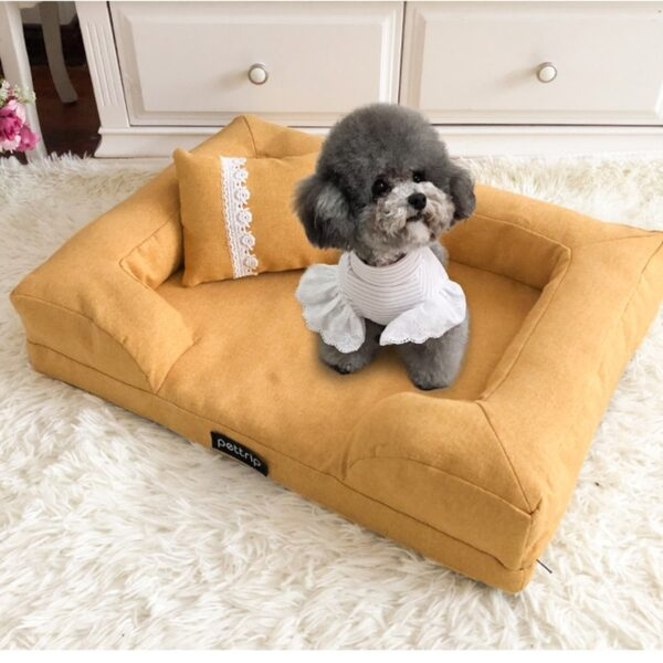 Puppy on a dog sofa bed